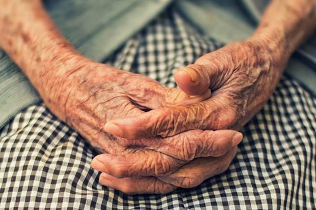 O Envelhecimento e a Digestão dos Alimentos